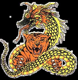Combat Martial Arts logo